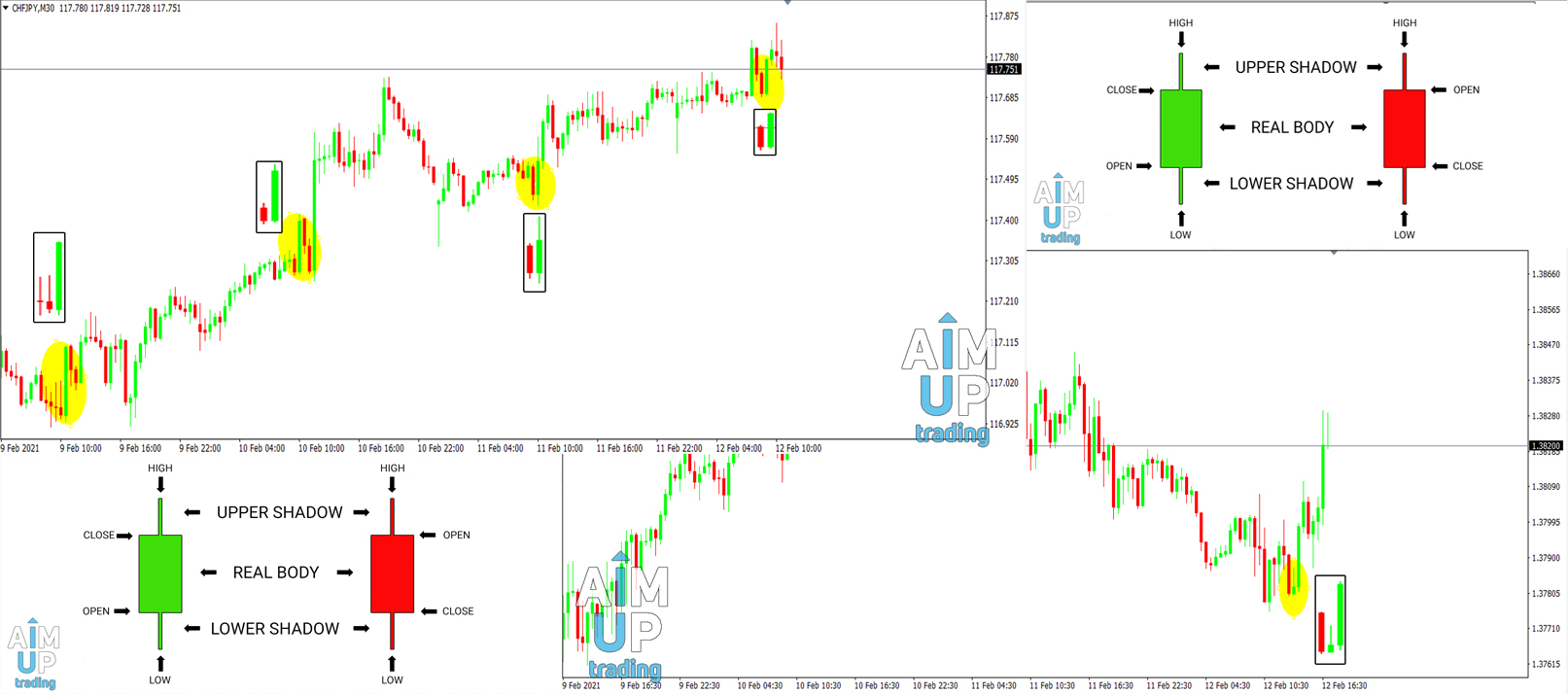 How-do-you-use-Japanese-candlesticks-in-forex-pdf